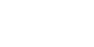 FASSTT